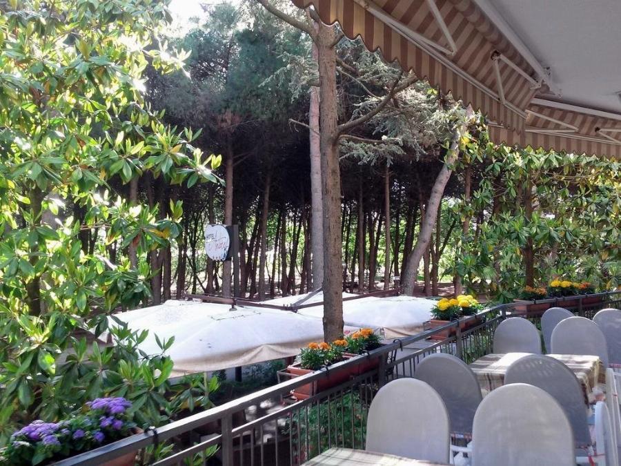 Hotel Antares Cervia